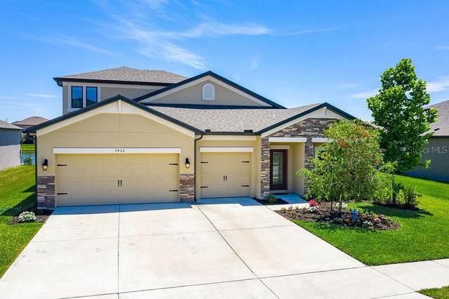 7932 Lago Mist Way, Wesley Chapel, FL 33545 (MLS #T3242473) :: Team Bohannon Keller Williams, Tampa Properties