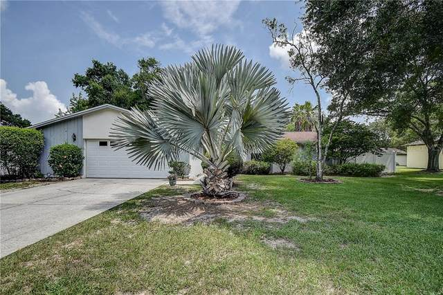 6623 Baybrooks Circle, Temple Terrace, FL 33617 (MLS #T3242489) :: Homepride Realty Services
