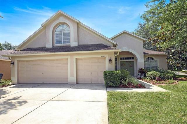 6038 Palomaglade Drive, Lithia, FL 33547 (MLS #T3242543) :: EXIT King Realty