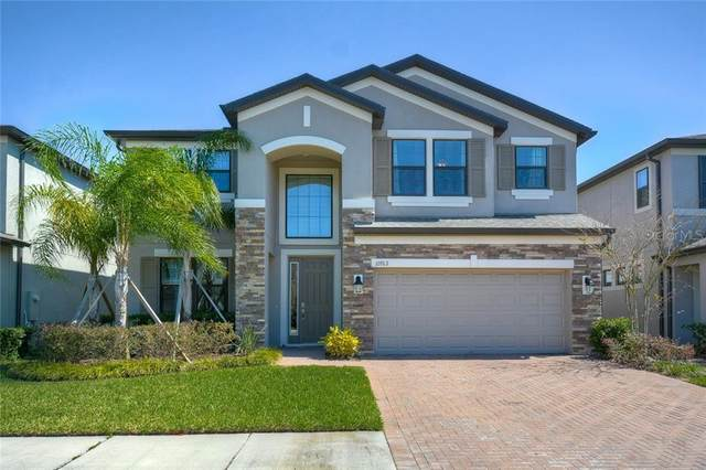 10762 Pleasant Knoll Drive, Tampa, FL 33647 (MLS #T3242586) :: Bustamante Real Estate