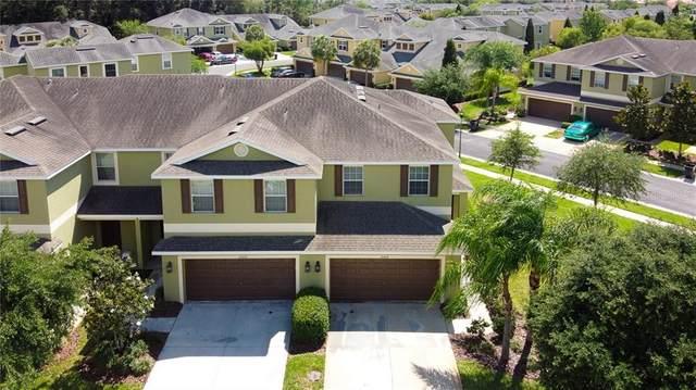 20218 Indian Rosewood Drive, Tampa, FL 33647 (MLS #T3242595) :: Cartwright Realty