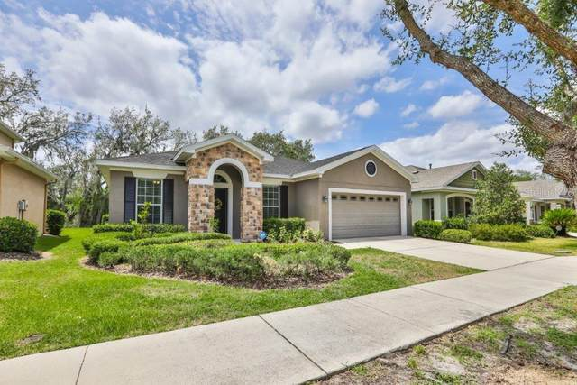 15850 Starling Water Drive, Lithia, FL 33547 (MLS #T3242626) :: EXIT King Realty