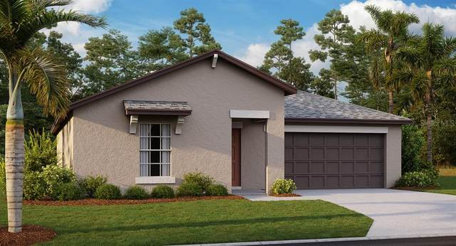 3160 Lytton Hall Drive, Zephyrhills, FL 33540 (MLS #T3242646) :: The Brenda Wade Team