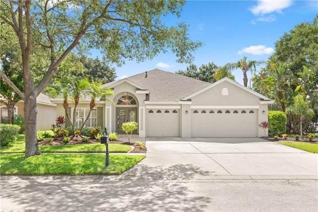 10632 Weybridge Drive, Tampa, FL 33626 (MLS #T3242694) :: Lucido Global