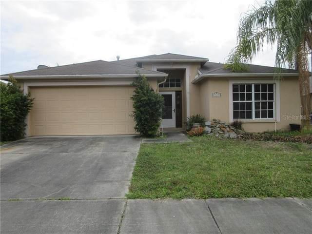 29630 Birds Eye Drive, Wesley Chapel, FL 33543 (MLS #T3242698) :: Griffin Group