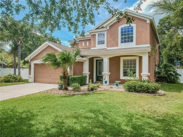 1605 Weld Bird Court, Valrico, FL 33594 (MLS #T3242700) :: Team Pepka