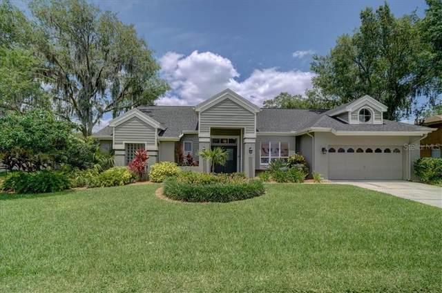 6511 Grazing Lane, Odessa, FL 33556 (MLS #T3242708) :: Team Bohannon Keller Williams, Tampa Properties