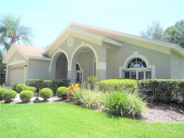 10150 Whisper Pointe Drive, Tampa, FL 33647 (MLS #T3242722) :: Team Bohannon Keller Williams, Tampa Properties