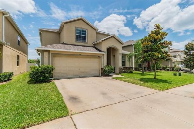 18412 Aylesbury Lane, Land O Lakes, FL 34638 (MLS #T3242727) :: Team Bohannon Keller Williams, Tampa Properties