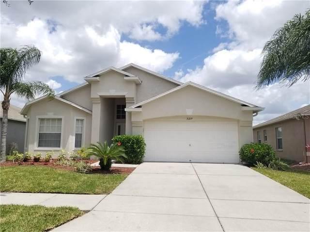 31219 Baclan Drive, Wesley Chapel, FL 33545 (MLS #T3242739) :: Team Bohannon Keller Williams, Tampa Properties