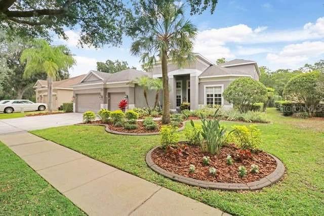 3610 Cordgrass Drive, Valrico, FL 33596 (MLS #T3242758) :: Pristine Properties