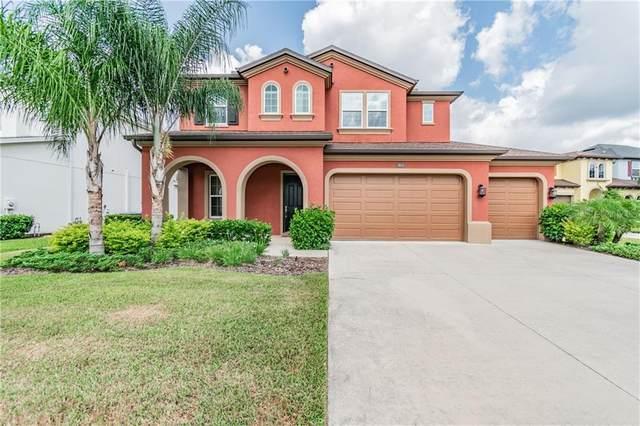 4043 Empoli Court, Wesley Chapel, FL 33543 (MLS #T3242760) :: Team Bohannon Keller Williams, Tampa Properties