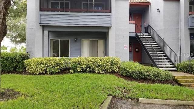 10265 Gandy Boulevard N #705, St Petersburg, FL 33702 (MLS #T3242803) :: Baird Realty Group