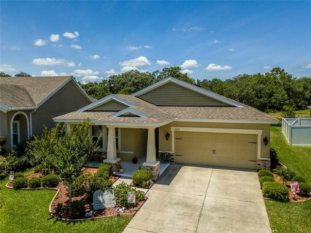 6259 Hawk Grove Court, Wesley Chapel, FL 33545 (MLS #T3242817) :: The Brenda Wade Team