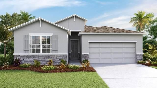 2231 Midnight Pearl Drive, Sarasota, FL 34240 (MLS #T3242879) :: Team Pepka