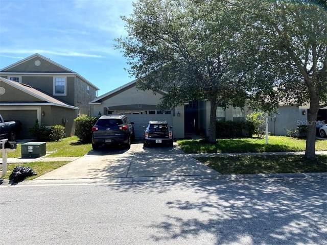 8721 Sandy Plains Drive, Riverview, FL 33578 (MLS #T3242949) :: Griffin Group