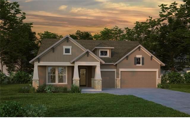 5358 Silver Sun Drive, Apollo Beach, FL 33572 (MLS #T3242984) :: Rabell Realty Group
