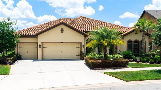 13236 Fawn Lily Drive, Riverview, FL 33579 (MLS #T3242993) :: Griffin Group