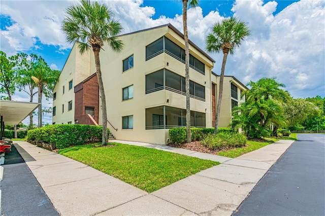 13602 S Village Drive #1213, Tampa, FL 33618 (MLS #T3242994) :: Bustamante Real Estate