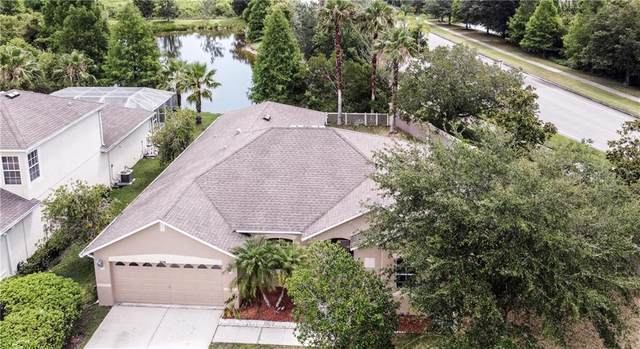 9218 Black Thorn Loop, Land O Lakes, FL 34638 (MLS #T3243003) :: CENTURY 21 OneBlue