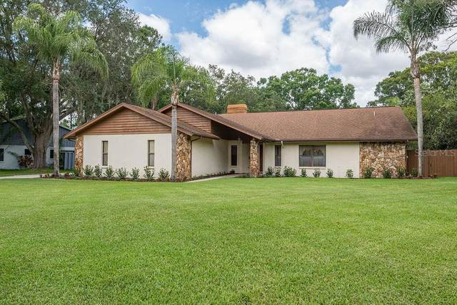 711 Chancellar Drive, Lutz, FL 33548 (MLS #T3243018) :: Team Bohannon Keller Williams, Tampa Properties