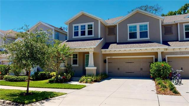 14614 Rocky Brook Drive, Tampa, FL 33625 (MLS #T3243022) :: Cartwright Realty