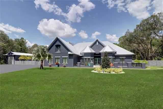 8625 Tarpon Springs Road, Odessa, FL 33556 (MLS #T3243069) :: Team Bohannon Keller Williams, Tampa Properties