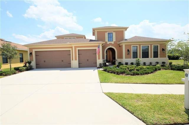 32040 Pinfeld Drive, Wesley Chapel, FL 33543 (MLS #T3243107) :: Griffin Group
