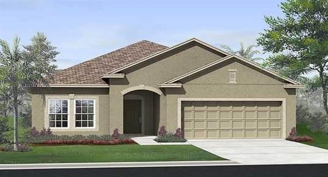 1691 Chatsworth Circle, Saint Cloud, FL 34771 (MLS #T3243143) :: Baird Realty Group