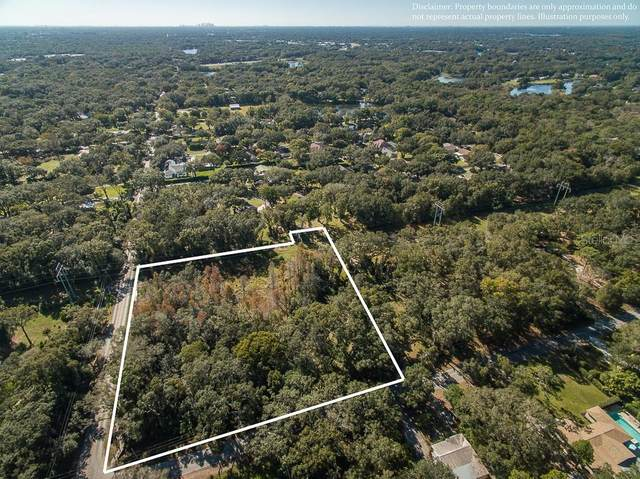 Whitaker Road, Lutz, FL 33549 (MLS #T3243147) :: Team Bohannon Keller Williams, Tampa Properties