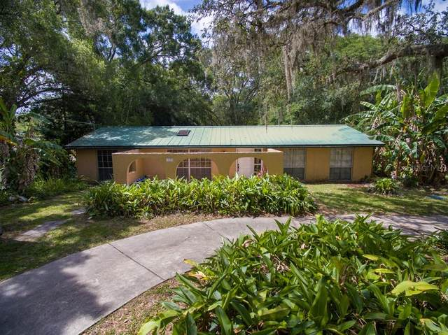 1523 Vandervort Road, Lutz, FL 33549 (MLS #T3243159) :: Icon Premium Realty