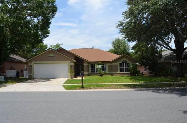 24335 Twin Lake Drive, Land O Lakes, FL 34639 (MLS #T3243178) :: Team Bohannon Keller Williams, Tampa Properties