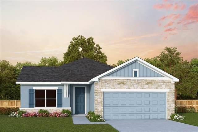 5333 Senza Trail, Palmetto, FL 34221 (MLS #T3243198) :: Burwell Real Estate