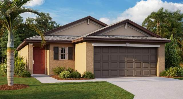 14635 Dunrobin Drive, Wimauma, FL 33598 (MLS #T3243200) :: Team Bohannon Keller Williams, Tampa Properties