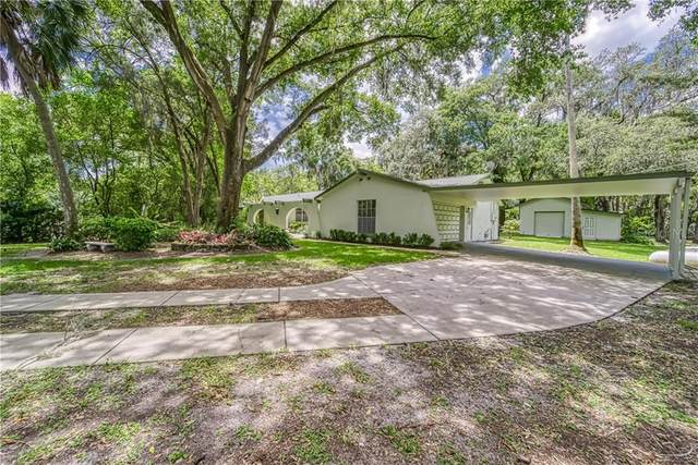 8205 Pleasant Lane, Riverview, FL 33569 (MLS #T3243210) :: The Duncan Duo Team