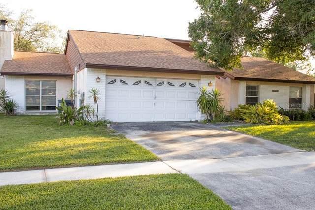 11322 Hollyglen Drive, Tampa, FL 33624 (MLS #T3243228) :: Lucido Global