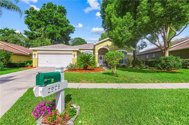 2906 Red Coat Circle, Brandon, FL 33511 (MLS #T3243277) :: Baird Realty Group
