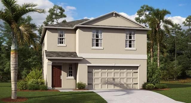 2816 Black Birch Drive, Ocoee, FL 34761 (MLS #T3243288) :: Team Bohannon Keller Williams, Tampa Properties