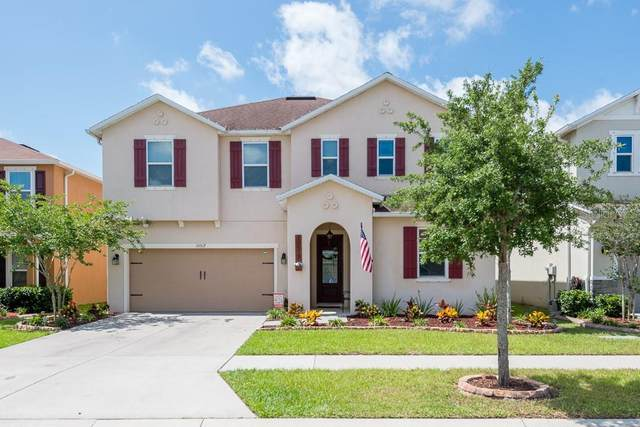 10517 Massimo Drive, Wimauma, FL 33598 (MLS #T3243343) :: Team Bohannon Keller Williams, Tampa Properties