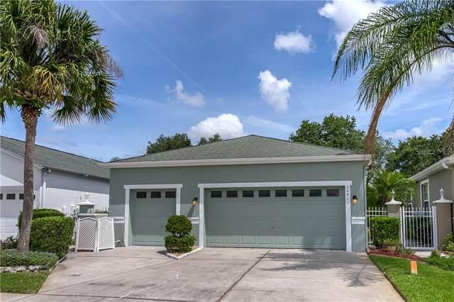 20911 Tangor Road, Land O Lakes, FL 34637 (MLS #T3243347) :: The Duncan Duo Team