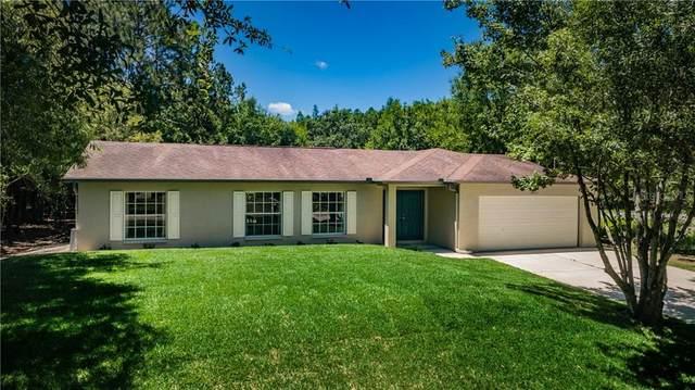 18018 Driftwood Lane, Lutz, FL 33558 (MLS #T3243362) :: Team Borham at Keller Williams Realty