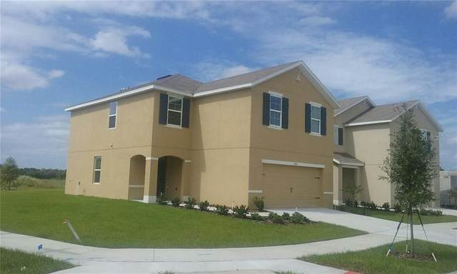 10111 Geese Trail Circle, Sun City Center, FL 33573 (MLS #T3243376) :: Team Bohannon Keller Williams, Tampa Properties
