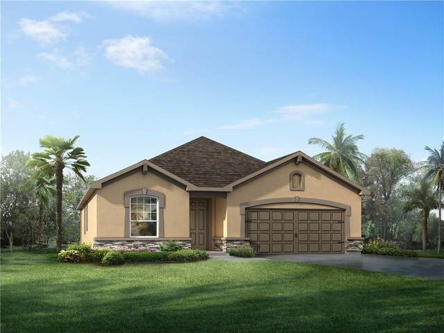 12935 Satin Lily, Riverview, FL 33579 (MLS #T3243385) :: Heart & Home Group