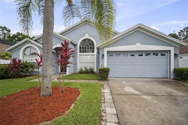 18527 Kingbird Drive, Lutz, FL 33558 (MLS #T3243488) :: Team Bohannon Keller Williams, Tampa Properties