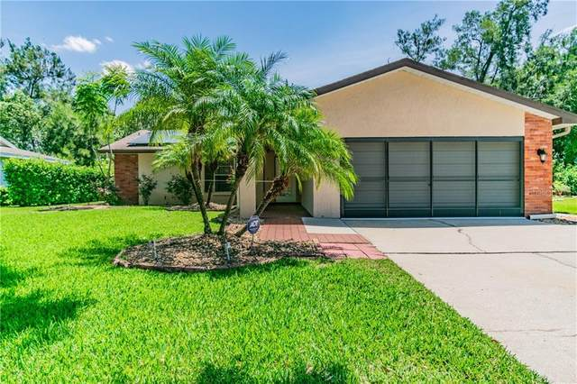 2863 Lomond Drive, Palm Harbor, FL 34684 (MLS #T3243523) :: Team Bohannon Keller Williams, Tampa Properties