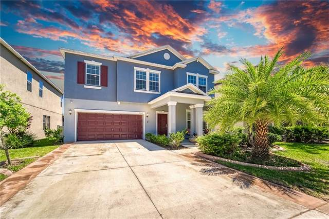 11057 Little Blue Heron Drive, Riverview, FL 33579 (MLS #T3243526) :: Heart & Home Group