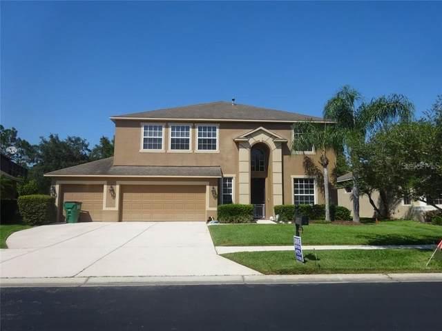 27301 Fordham Drive, Wesley Chapel, FL 33544 (MLS #T3243534) :: Team Bohannon Keller Williams, Tampa Properties