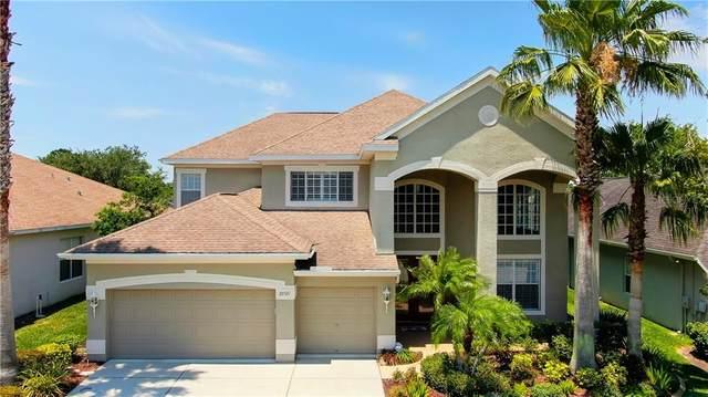23521 Abercorn Lane, Land O Lakes, FL 34639 (MLS #T3243554) :: The Nathan Bangs Group