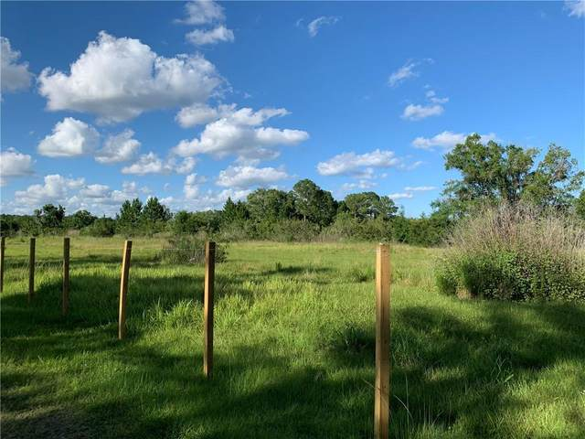 Cobb Road Road, Land O Lakes, FL 34638 (MLS #T3243556) :: Team Bohannon Keller Williams, Tampa Properties