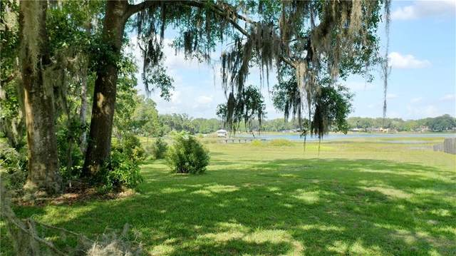 0 Livingston Road, Lutz, FL 33559 (MLS #T3243580) :: Griffin Group